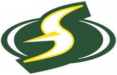 Seattle Storm 2016-Pres Alternate Logo decal sticker
